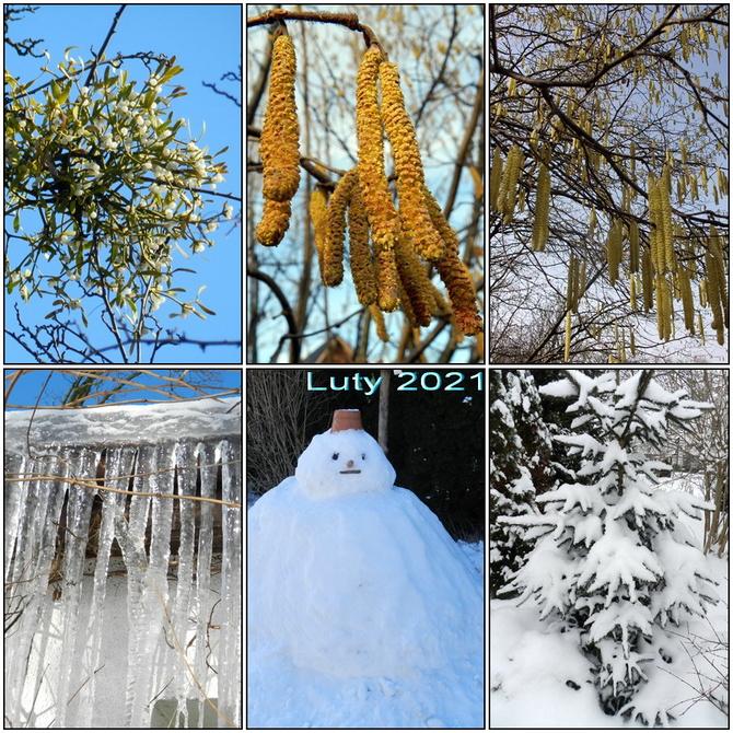 W lutym śnieg i mróz