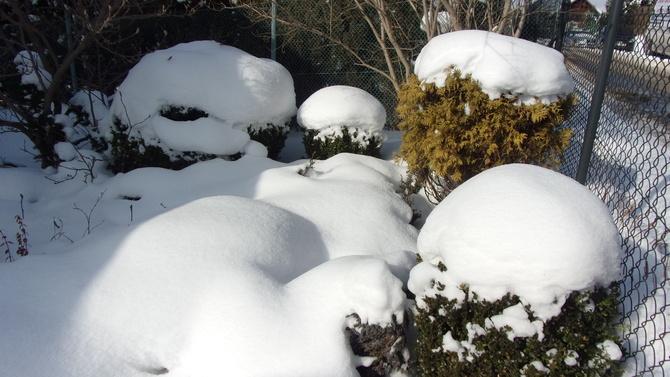 Wczorajsza sytuacja śniegowa.