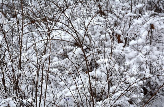 Wszędzie napadało śniegu