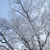 -12, zimo, nie przesadzaj :))))