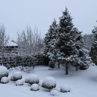 Czy lubicie taką zimę.