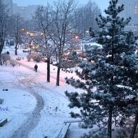 Dzisiaj padał u mnie nowy śnieg.