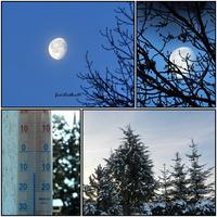 Księżyc o poranku