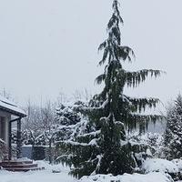 Taką zimę lubię