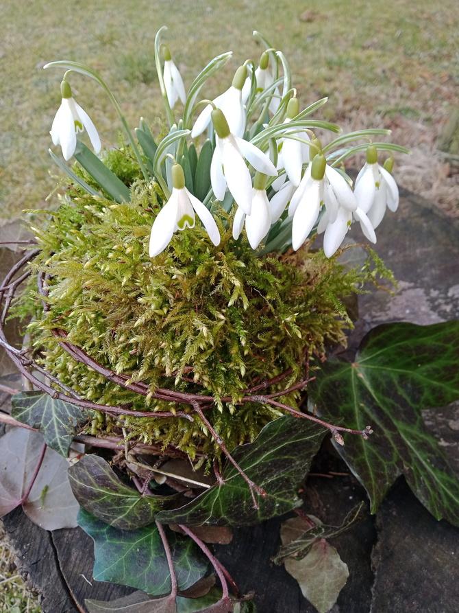 Witamy wiosnę!