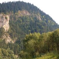 Lasy w górach