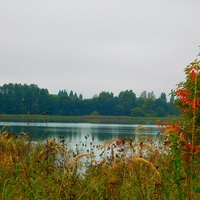 nad wodą - jesień