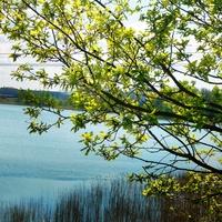 nad wodą - wiosna