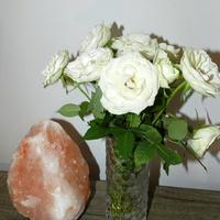 Róże białe