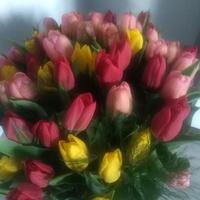 Urodzinowe tulipnki