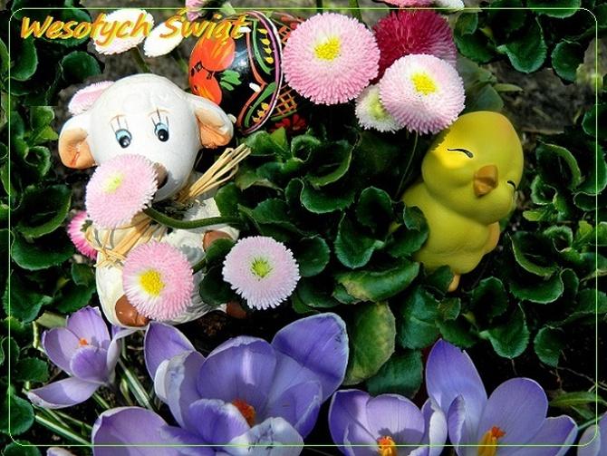 Wesołych i pogodnych Świąt Wielkanocnych,