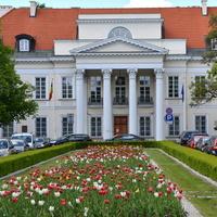 Mnóstwo tulipanów przed pałacem w moim mieście