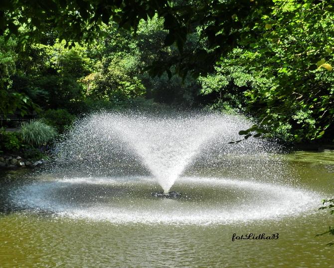 Fontanna w Ogrodzie Botanicznym
