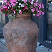 Wazon z kwiatami stał na chodniku w Gdańsku