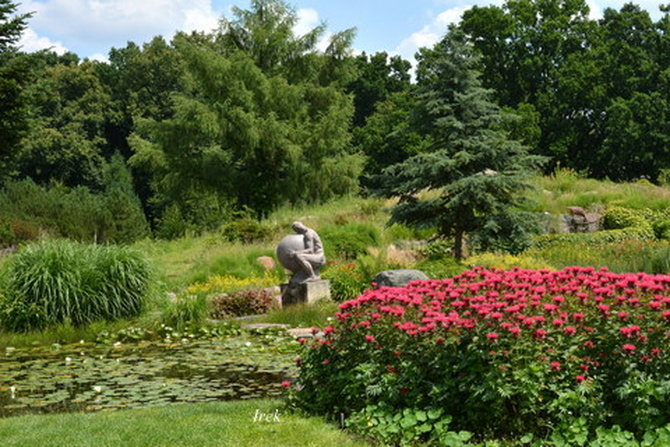 Ogród botaniczny, fragment