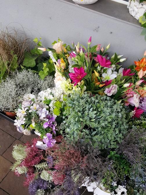 Kwiaty......