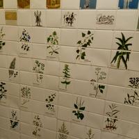 Ściana pełna nazw ziół...