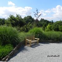 Odpoczynek wśród zieleni