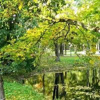 Jesień w parku...