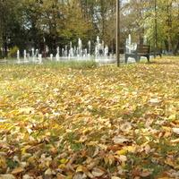 Jesienny dywan z wodotryskiem.
