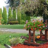Jesienny ogród o poranku