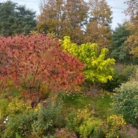 Kolorowa jesień :)