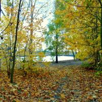 Piękną mamy jesień :)