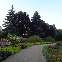 Spacerując po O.Botanicznym